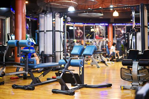 Mô hình phòng tập gym chuyên nghiệp.